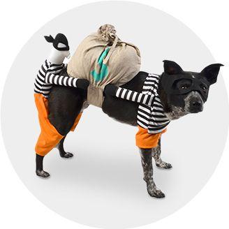 Halloween Costumes 2019 : Target
