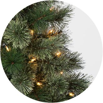 other ways to find your tree - Christmas Trees