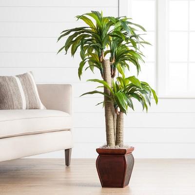 Indoor Plants · Artificial Trees