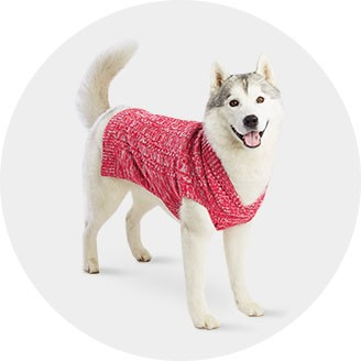 top paws dog clothes