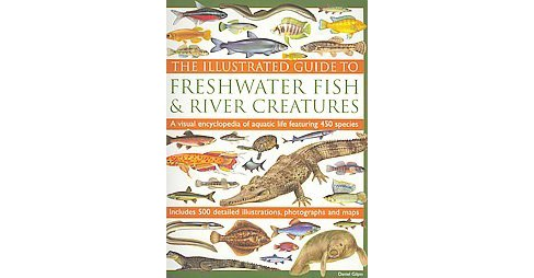 Illustrated Guide to Freshwater Fish & River Creatures : A Visual Encyclopedia of Aquatic Life Featuring - image 1 of 1