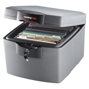 Sentry Safe Fire/Water Data Safe - 1.3 cubic feet, Silver Gray
