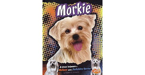 Morkie : A Cross Between a Maltese and a Yorkshire Terrier (Library) (Heather E. Schwartz) - image 1 of 1