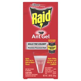 Raid Ant Gel, 1.06 Oz (1 Ct)