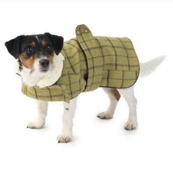 Tweed Jacket Dog Costume - Green