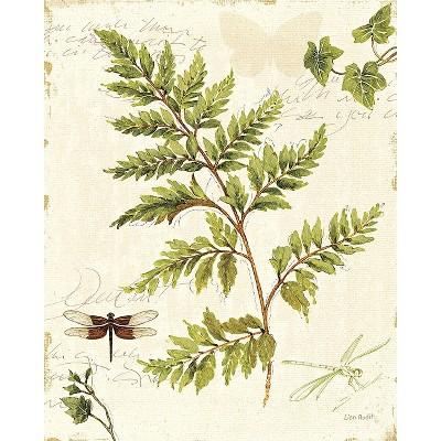 Art.com - Ivies and Ferns I Art Print
