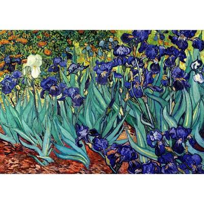 Art.com - Irises Saint-Remy Art Print