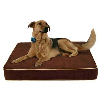 buddy beds : dog beds & blankets : target