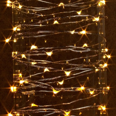 20 ft. LED String Light with Timer - Warm White : Target