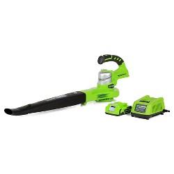 Greenworks G24 24V Cordless 2 Speed Blower