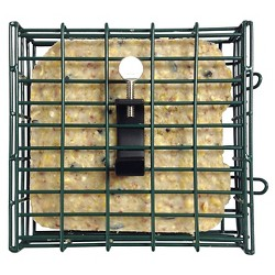 Droll Yankees Suet with Pole Clamp Double Feeder