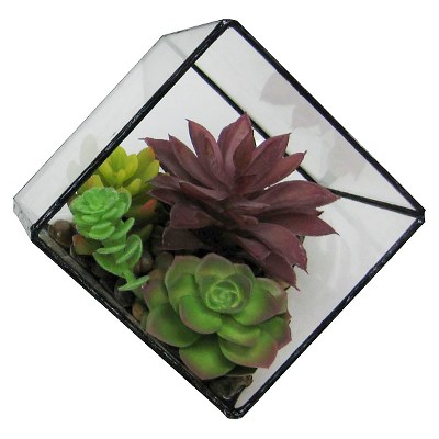 Succulent In Faceted Glass Small - Threshold™