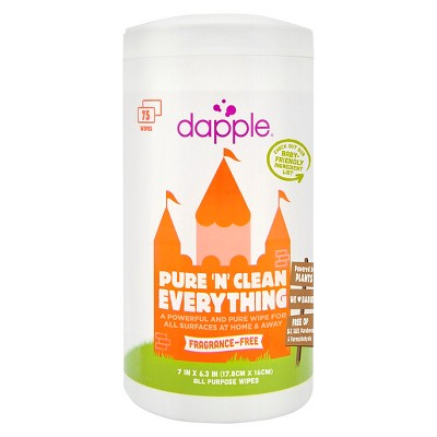 Dapple Naturally Clean Everything Wipes - 75 ct