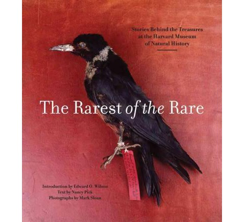 Rarest of the Rare : Stories Behind the Treasures at the Harvard Museum of Natural History (Paperback) - image 1 of 1