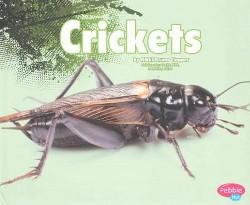 Crickets (Library) (Nikki Bruno Clapper)
