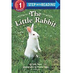 Little Rabbit (Library) (Judy Dunn)