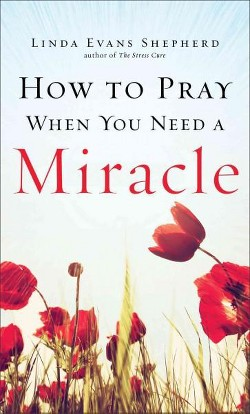 How to Pray When You Need a Miracle (Paperback) (Linda Evans Shepherd)