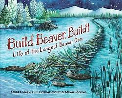 Build, Beaver, Build! : Life at the Longest Beaver Dam (Library) (Sandra Markle)