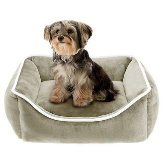 Image result for bed dog