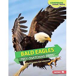 Bald Eagles : Prey-Snatching Birds (Library) (Laura Hamilton Waxman)