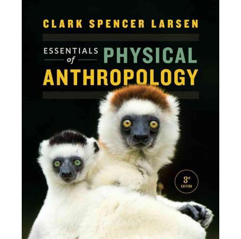 Essentials of Physical Anthropology : Discovering Our Origins (Paperback) (Clark Spencer Larsen) - image 1 of 1