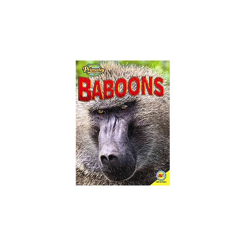 Baboons (Library) (Alexis Roumanis)
