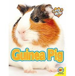 Guinea Pig (Library) (Jill Foran & Katie Gillespie)