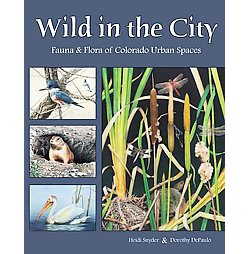 Wild in the City : Fauna & Flora of Colorado Urban Spaces (Paperback) (Heidi Synder & Dorothy Depaulo)