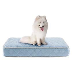 Tavis Quilted Memory Foam Orthopedic Napper Pet Bed