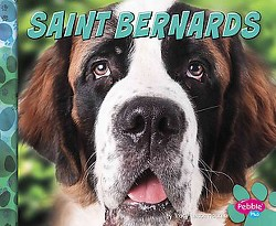 Saint Bernards (Library) (Nikki Bruno Clapper)