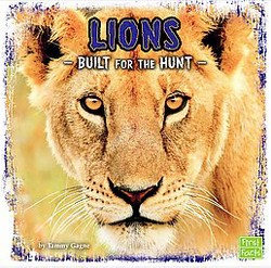 Lions : Built for the Hunt (Library) (Tammy Gagne)