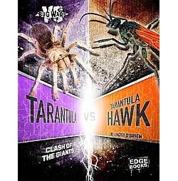 Tarantula Vs. Tarantula Hawk : Clash of the Giants (Library) (Lindsy O'Brien)