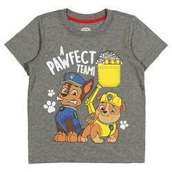 Toddler Boys' Paw Patrol™ T-Shirt - Gray