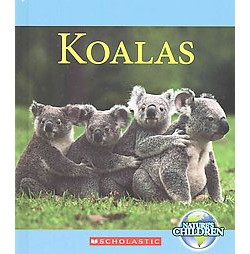 Koalas (Library) (Josh Gregory)
