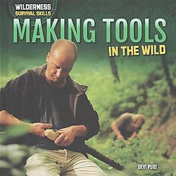Making Tools in the Wild (Library) (Devi Puri)