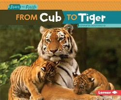 From Cub to Tiger (Library) (Jennifer Boothroyd)