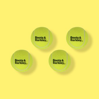 Tennis Ball 4pk Pet Toy - 2.5