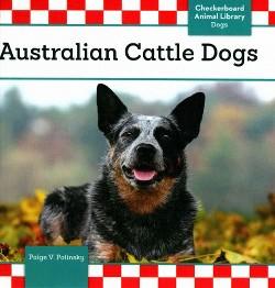 Australian Cattle Dogs (Library) (Paige V. Polinsky)