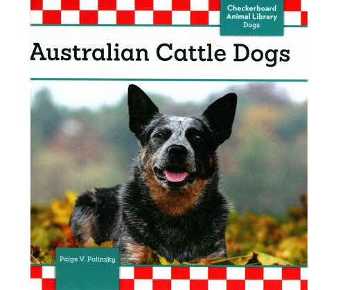 Australian Cattle Dogs (Library) (Paige V. Polinsky) - image 1 of 1