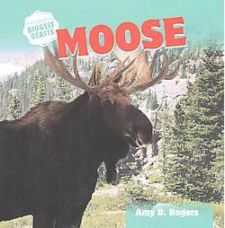 Moose (Reprint) (Paperback) (Amy B. Rogers)