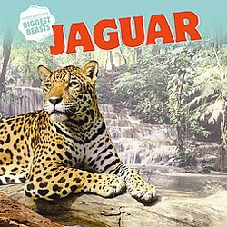 Jaguar (Reprint) (Paperback) (Elizabeth Morgan)