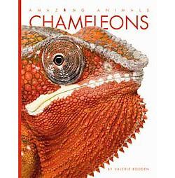 Chameleons (Library) (Valerie Bodden)