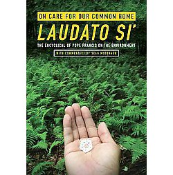 On Care for Our Common Home Laudato Si' : The Encyclical of Pope Francis on the Environment (Paperback)