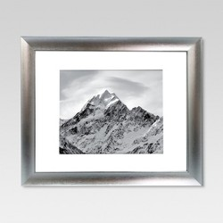 Matted Silver Frame - Threshold™