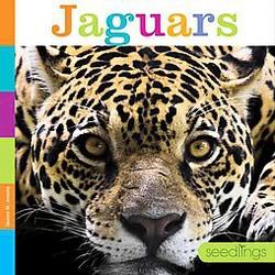 Jaguars (Library) (Quinn M. Arnold)