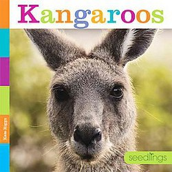 Kangaroos (Library) (Kate Riggs)