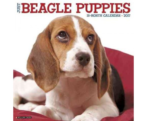 Just Beagle Puppies 2017 Calendar (Paperback) - image 1 of 1