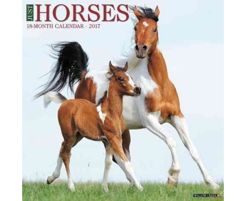 Just Horses 2017 Calendar (Paperback) - image 1 of 1