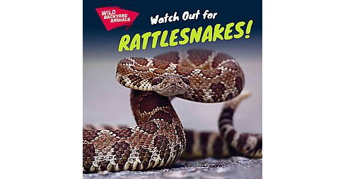 Watch Out for Rattlesnakes! (Vol 4) (Paperback) (Jesse McFadden) - image 1 of 1