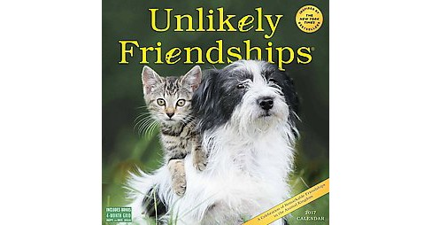 Unlikely Friendships 2017 Calendar (Paperback) (Workman Publishing) - image 1 of 1